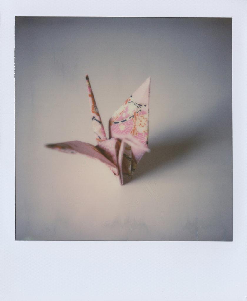 170814-Polaroid-002.jpg